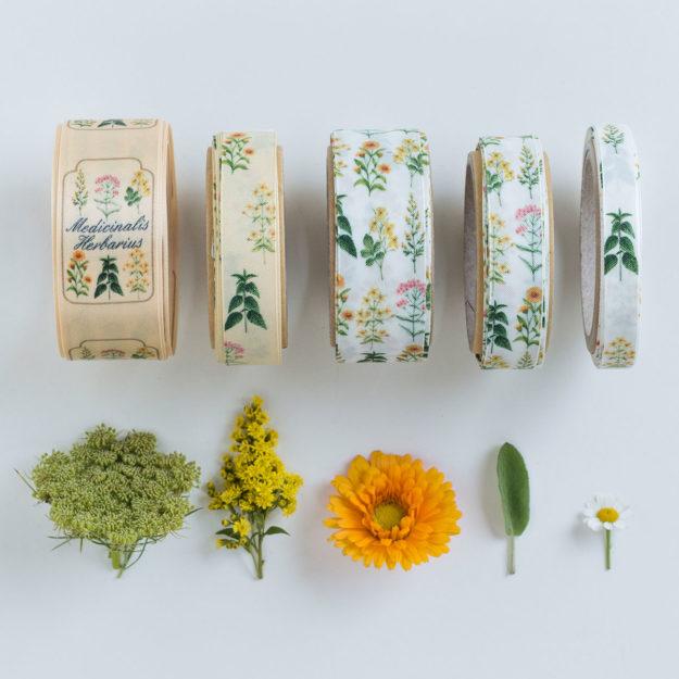 nastro personalizzato botanica-01